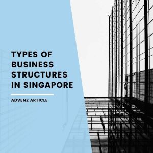 Types of Business Structures in Singapore